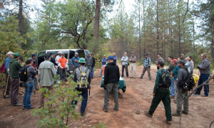 IMBA Advanced Trail Building School Field Day attendees.